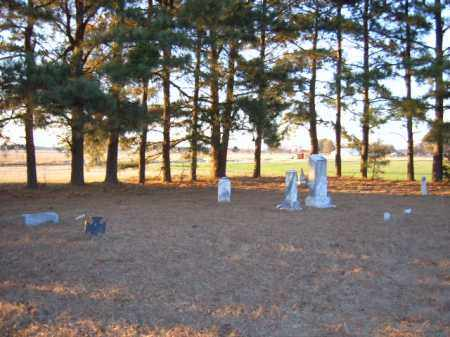 *WILKINS CEMETERY,  - Cross County, Arkansas |  *WILKINS CEMETERY - Arkansas Gravestone Photos