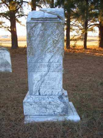 WILKINS, W P - Cross County, Arkansas | W P WILKINS - Arkansas Gravestone Photos