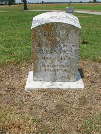WILSON, FRED A - Cross County, Arkansas | FRED A WILSON - Arkansas Gravestone Photos