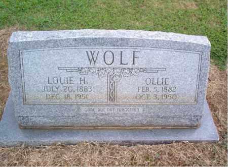 WOLF, LOUIE H - Cross County, Arkansas | LOUIE H WOLF - Arkansas Gravestone Photos