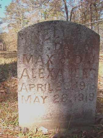 ALEXANDER, INELL - Dallas County, Arkansas | INELL ALEXANDER - Arkansas Gravestone Photos
