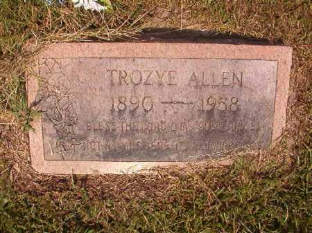ALLEN, TROYZE - Dallas County, Arkansas | TROYZE ALLEN - Arkansas Gravestone Photos