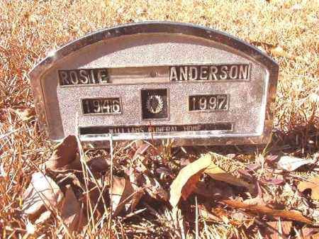 ANDERSON, ROSIE - Dallas County, Arkansas | ROSIE ANDERSON - Arkansas Gravestone Photos