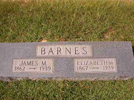 BARNES, ELIZABETH M - Dallas County, Arkansas | ELIZABETH M BARNES - Arkansas Gravestone Photos