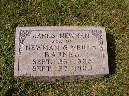 BARNES, JAMES NEWMAN - Dallas County, Arkansas | JAMES NEWMAN BARNES - Arkansas Gravestone Photos