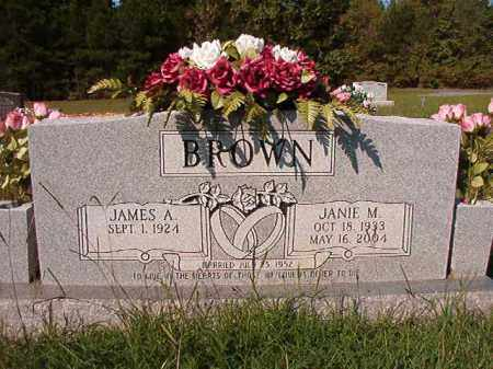 BROWN, JANIE M - Dallas County, Arkansas | JANIE M BROWN - Arkansas Gravestone Photos