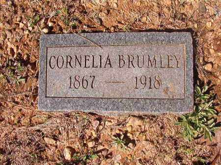 BRUMLEY, CORNELIA - Dallas County, Arkansas | CORNELIA BRUMLEY - Arkansas Gravestone Photos