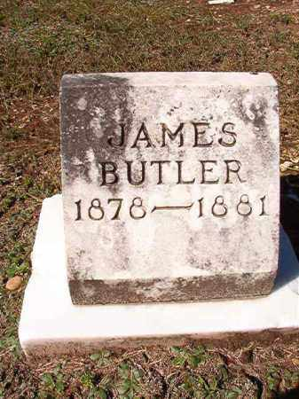 BUTLER, JAMES - Dallas County, Arkansas | JAMES BUTLER - Arkansas Gravestone Photos
