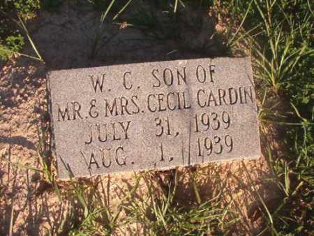 CARDIN, W C - Dallas County, Arkansas | W C CARDIN - Arkansas Gravestone Photos