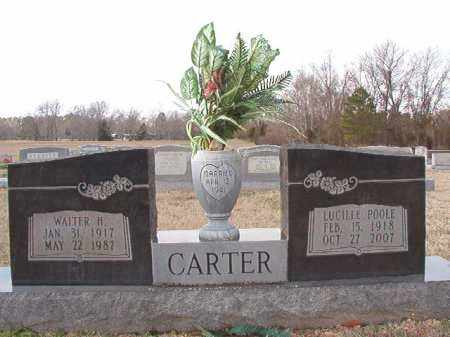 CARTER, WALTER H - Dallas County, Arkansas | WALTER H CARTER - Arkansas Gravestone Photos