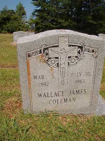 COLEMAN, WALLACE JAMES - Dallas County, Arkansas | WALLACE JAMES COLEMAN - Arkansas Gravestone Photos