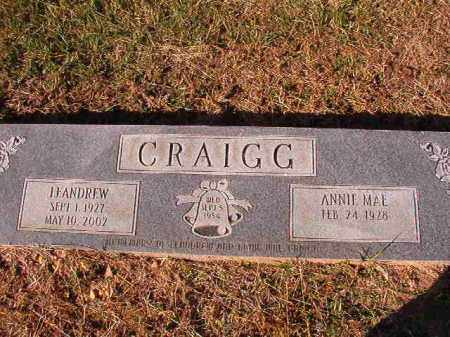 CRAIGG, LEANDREW - Dallas County, Arkansas | LEANDREW CRAIGG - Arkansas Gravestone Photos