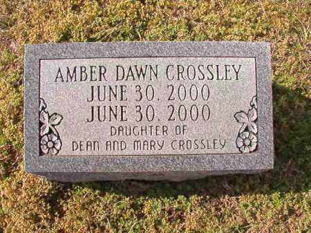 CROSSLEY, AMBER DAWN - Dallas County, Arkansas | AMBER DAWN CROSSLEY - Arkansas Gravestone Photos