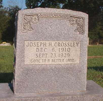 CROSSLEY, JOSEPH H - Dallas County, Arkansas | JOSEPH H CROSSLEY - Arkansas Gravestone Photos