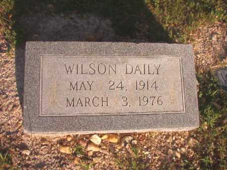 DAILY, WILSON - Dallas County, Arkansas | WILSON DAILY - Arkansas Gravestone Photos