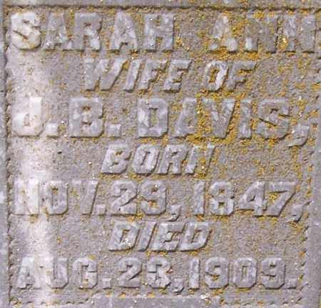 DAVIS, SARAH ANN (CLOSEUP) - Dallas County, Arkansas | SARAH ANN (CLOSEUP) DAVIS - Arkansas Gravestone Photos