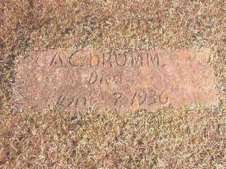 DRUMM, A C - Dallas County, Arkansas | A C DRUMM - Arkansas Gravestone Photos
