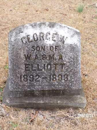 ELLIOTT, GEORGE W - Dallas County, Arkansas | GEORGE W ELLIOTT - Arkansas Gravestone Photos