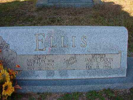 ELLIS, NEWTON WILLIAM - Dallas County, Arkansas | NEWTON WILLIAM ELLIS - Arkansas Gravestone Photos