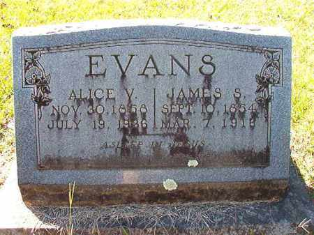 EVANS, ALICE V - Dallas County, Arkansas | ALICE V EVANS - Arkansas Gravestone Photos