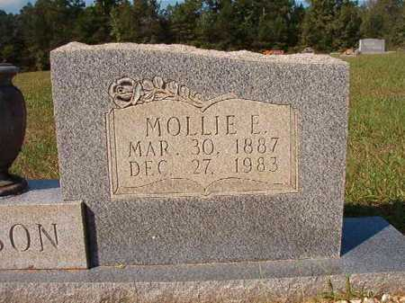 FENISON, MOLLIE E - Dallas County, Arkansas | MOLLIE E FENISON - Arkansas Gravestone Photos