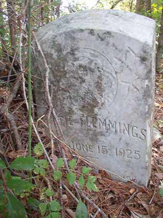 FLEMMINGS, BETTIE - Dallas County, Arkansas | BETTIE FLEMMINGS - Arkansas Gravestone Photos