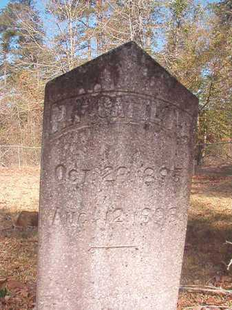 GATTLING, P F - Dallas County, Arkansas | P F GATTLING - Arkansas Gravestone Photos