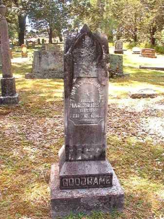 GOODGAME, THOMAS F - Dallas County, Arkansas   THOMAS F GOODGAME - Arkansas Gravestone Photos