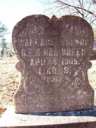 GREEN, WALLACE - Dallas County, Arkansas | WALLACE GREEN - Arkansas Gravestone Photos