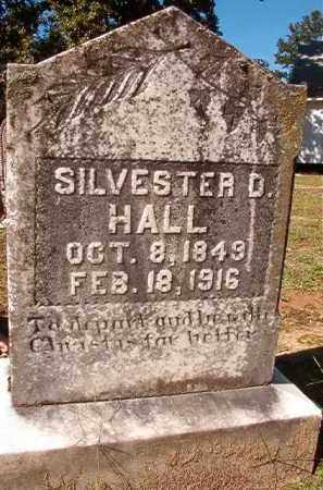 HALL, SILVESTER D - Dallas County, Arkansas | SILVESTER D HALL - Arkansas Gravestone Photos