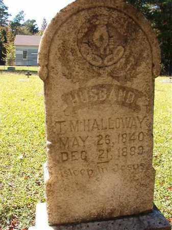 HALLOWAY, T M - Dallas County, Arkansas | T M HALLOWAY - Arkansas Gravestone Photos