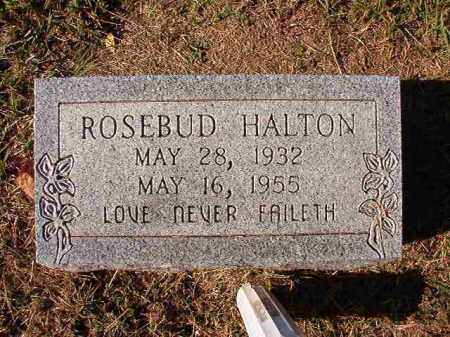 HALTON, ROSEBUD - Dallas County, Arkansas | ROSEBUD HALTON - Arkansas Gravestone Photos