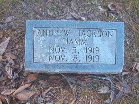 HAMM, ANDREW JACKSON - Dallas County, Arkansas | ANDREW JACKSON HAMM - Arkansas Gravestone Photos