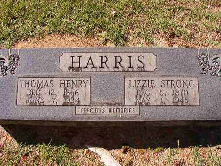 HARRIS, LIZZIE - Dallas County, Arkansas | LIZZIE HARRIS - Arkansas Gravestone Photos