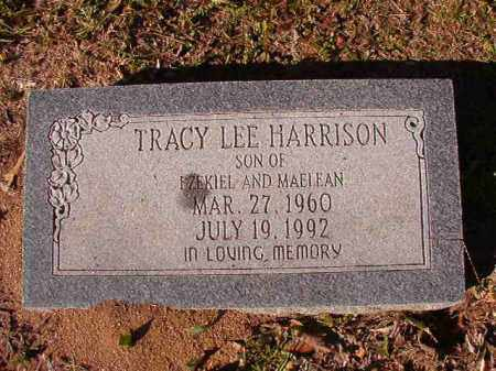 HARRISON, TRACY LEE - Dallas County, Arkansas | TRACY LEE HARRISON - Arkansas Gravestone Photos