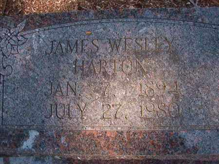 HARTON, JAMES WESLEY - Dallas County, Arkansas | JAMES WESLEY HARTON - Arkansas Gravestone Photos