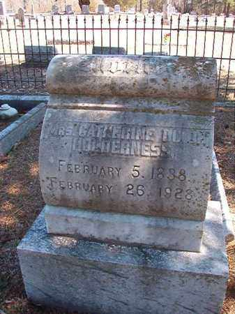 DIXON HOLDERNESS, CATHERINE - Dallas County, Arkansas | CATHERINE DIXON HOLDERNESS - Arkansas Gravestone Photos