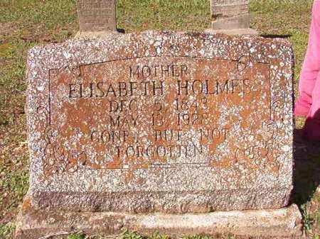 HOLMES, ELISABETH - Dallas County, Arkansas | ELISABETH HOLMES - Arkansas Gravestone Photos