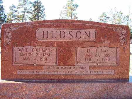 HUDSON, DAVID COLUMBUS - Dallas County, Arkansas | DAVID COLUMBUS HUDSON - Arkansas Gravestone Photos