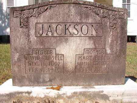 JACKSON, MARY ELLEN - Dallas County, Arkansas | MARY ELLEN JACKSON - Arkansas Gravestone Photos