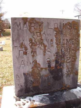 JAMES, MARY LOUISE - Dallas County, Arkansas | MARY LOUISE JAMES - Arkansas Gravestone Photos