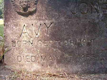 JONES, AMY - Dallas County, Arkansas | AMY JONES - Arkansas Gravestone Photos