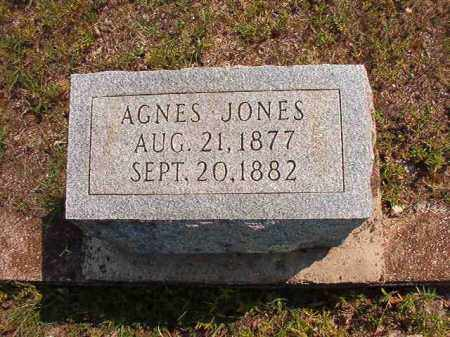 JONES, AGNES - Dallas County, Arkansas | AGNES JONES - Arkansas Gravestone Photos