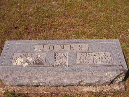 JONES, EMILY S - Dallas County, Arkansas | EMILY S JONES - Arkansas Gravestone Photos
