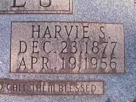 JONES, HARVIE S - Dallas County, Arkansas | HARVIE S JONES - Arkansas Gravestone Photos
