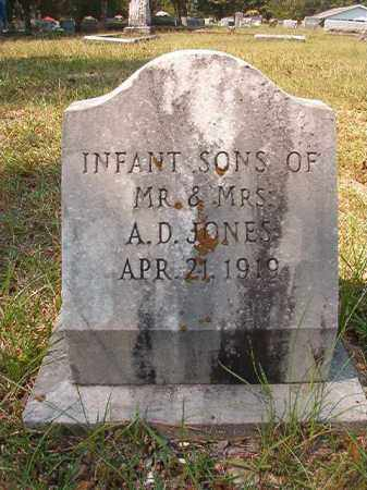JONES, INFANT SONS - Dallas County, Arkansas | INFANT SONS JONES - Arkansas Gravestone Photos