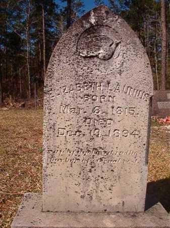 LAUNIUS, ELIZABETH - Dallas County, Arkansas | ELIZABETH LAUNIUS - Arkansas Gravestone Photos