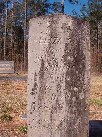 LAUNIUS, ELIZA C - Dallas County, Arkansas | ELIZA C LAUNIUS - Arkansas Gravestone Photos
