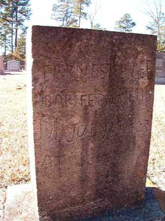 LEE, EARNEST E - Dallas County, Arkansas | EARNEST E LEE - Arkansas Gravestone Photos