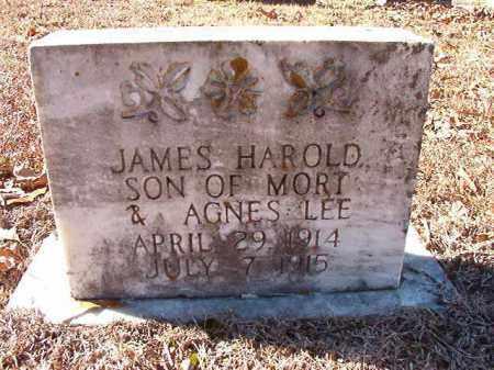 LEE, JAMES HAROLD - Dallas County, Arkansas | JAMES HAROLD LEE - Arkansas Gravestone Photos